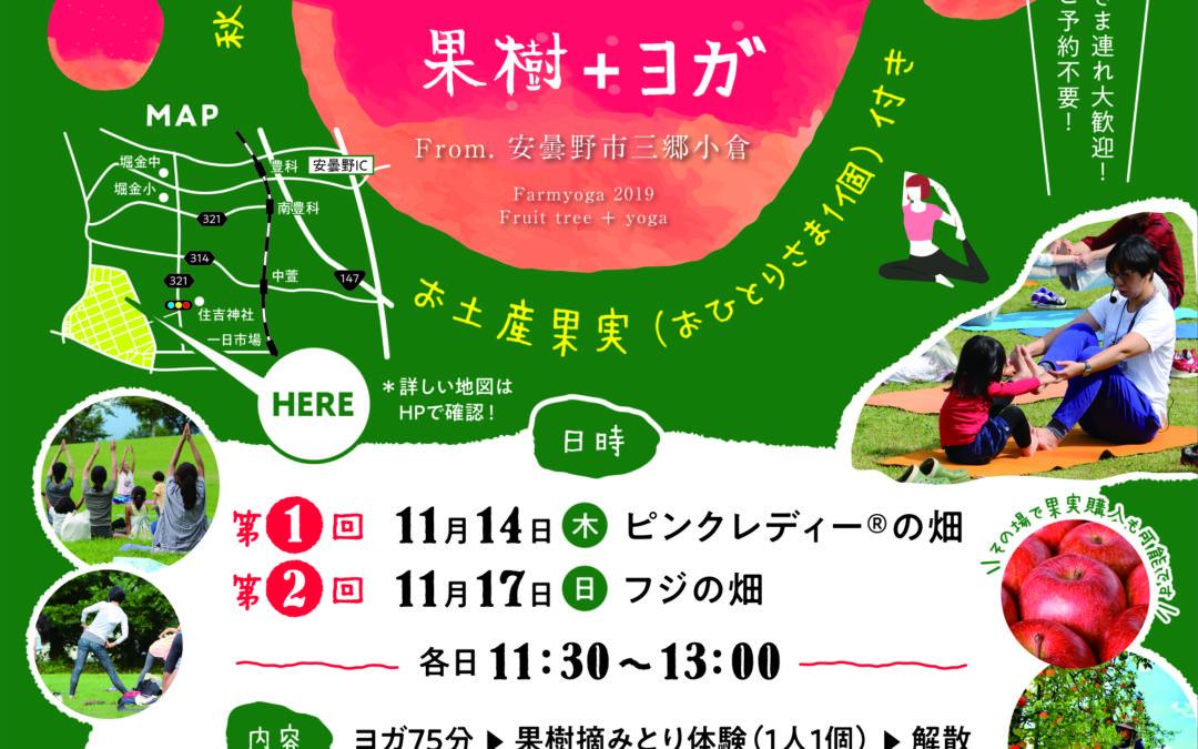 【11/14&17】リンゴ畑でヨガしよう!農園ヨガ