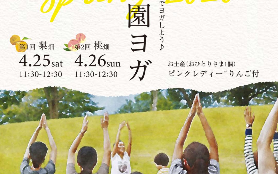 中止です→【4/25&26】春は梨桃の花の下でヨガしよう!農園ヨガ