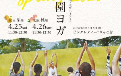【4/25&26】春は梨桃の花の下でヨガしよう!農園ヨガ